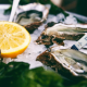 World Oyster Festival 2017 Oyster Tags